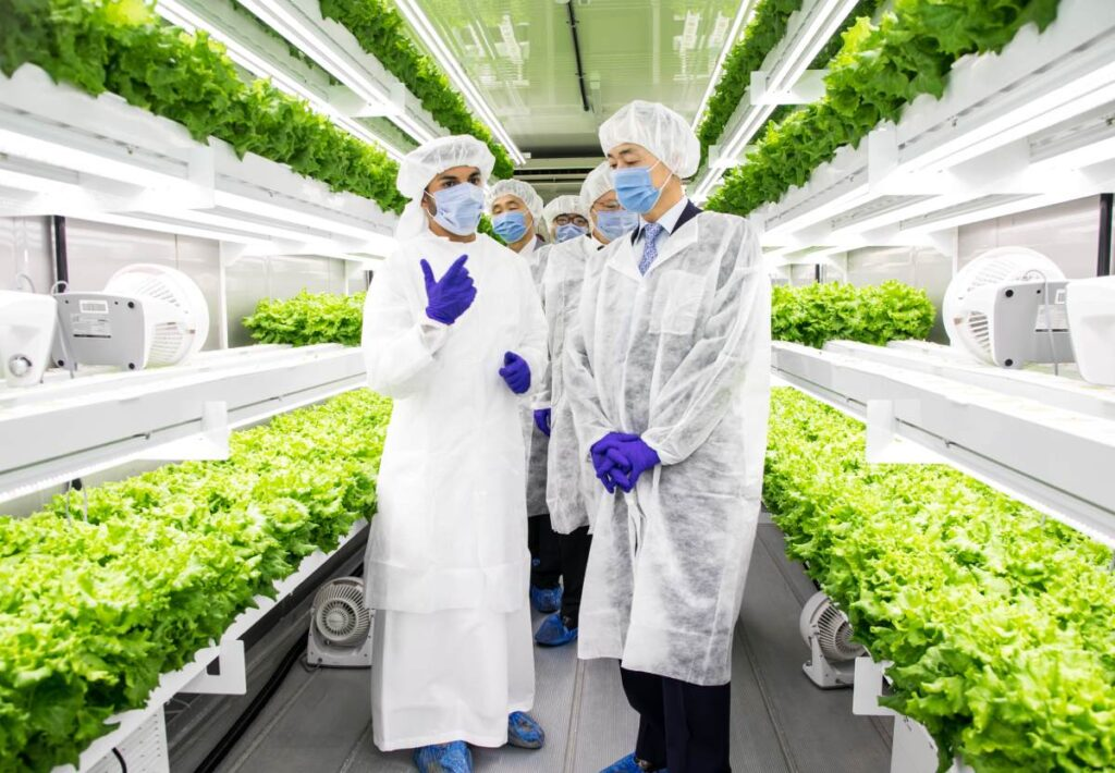 UAE's Newest Vertical Farm, Smart Acres, Successfully Launches, Propelling the UAE's Agricultural Development